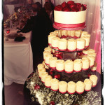 Lorna_Ray_wedding_442