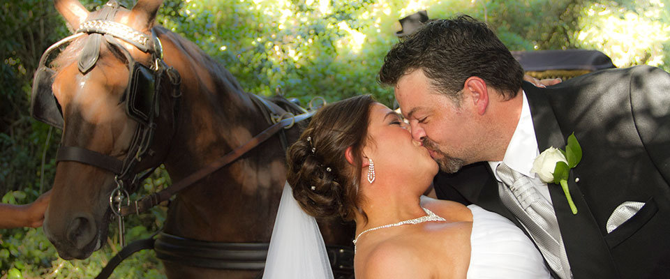 Wedding memories at the plantation in Port Elizabeth